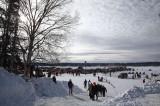Iditarod37_Willow_08Mar2009_ 200a.jpg