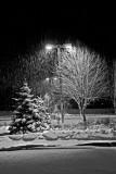 Solstice_Snow_21Dec2006_ 018acesbw.jpg