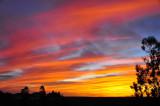 Sky Scenes