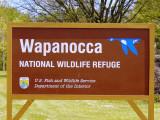 111-01113 Wappanocca.JPG