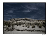 the dunes, I love so much