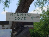 Minnow Cove
