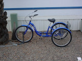 new blue bike shade