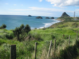 Coast close to New Plymouth