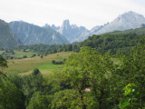 P.N.Picos de Europa