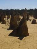The Pinnacles.Kangaroo