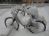 Bicicleta nevada