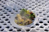223 Steaming Omelette on snow 1.jpg