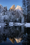 229 Cathedral Rocks reflection.jpg