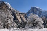 229 Half Dome in Winter.jpg