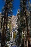 229 Yosemite Falls 1.jpg