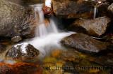 231 Bridalveil Creek 2.jpg