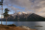 141 Lake Minnewanka Seagull 3.jpg