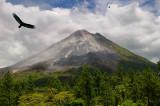 156 Volcan Arenal Vultures.jpg