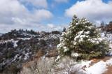 Chap. 8-4, Pine Mtn.-1