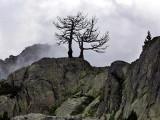 Parc National Aigüestortes & Vall de Boi.