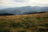 le petit ballon, Vosges du Sud.