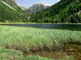estany Llebreta