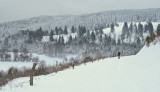 winter in the Vosges mountains.
