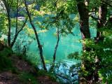 le lac des perches.