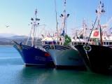 bateaux de pêche.