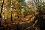 La Perheux  path.