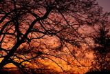 sunset - la Perheux