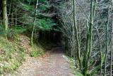le bout du tunnel?