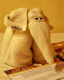 Great Elephant from Bathroom Towel!