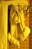 In Meantime, a Monkey Hangs in our Bathroom!
