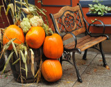Lovely Pumkins and Chair