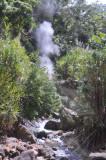 Smelly vapors climbing