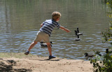 Boy Feeds the Ducks