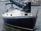BAROMETER SOUP   260  4  1995