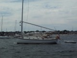 anchored in Provincetown