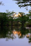 A Lockwood Park evening