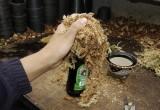 Make a  moss ball of good qualtity sphagnum moss around a bottle.