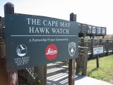Cape May Hawk Watch-NJ