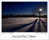 Happy Winter Montrealers ...