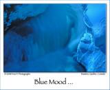 Feeling Blue ...
