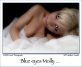 Blue Eyes Molly ...