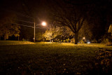 Foggy Evening Revisited  ~  November 2