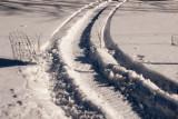 Make Tracks  ~  February 4