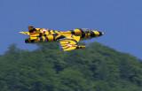 Tiger-Hunter