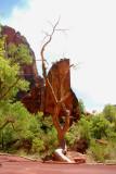 trip_2010