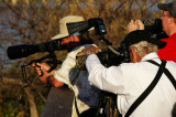 Photographers shooting the spoonbill