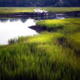 Shem Creek Tidal