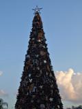 christmas tree 1264.jpg