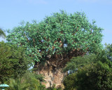 tree of life 1233.jpg