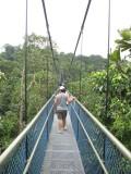 MacRitchie Tree Top Walk